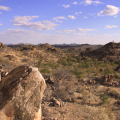 Mapungubwe-Private-Nature-Reserve-Part-2-in-Tff-68red